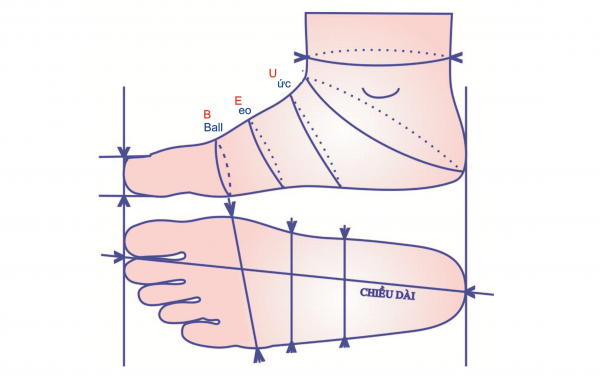 Thực hiện đo size giày